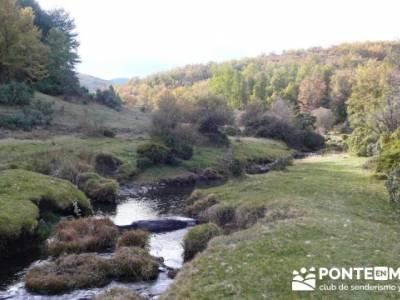 Excursiones en Madrid y alrededores, Parque Natural del Hayedo de Tejera Negra; rutas senderistas